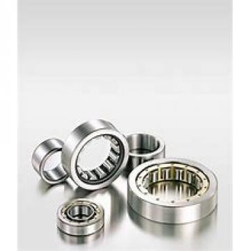 105 mm x 160 mm x 41 mm  NSK NN 3021 cylindrical roller bearings